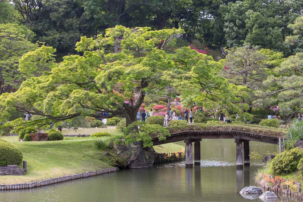 The Landscaped Gardens Of Tokyo