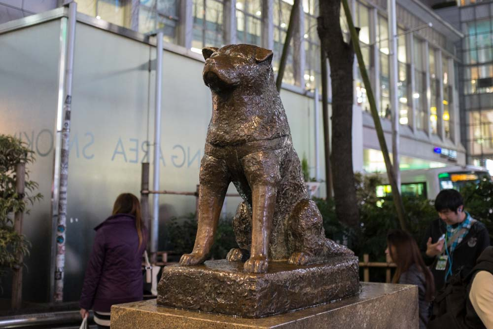 Hachiko: Tokyo's Most Famous Statue | JAPANISTRY